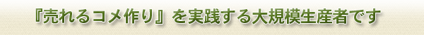 page_header1-1