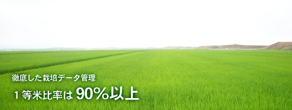 niigata_yuki_banner_big
